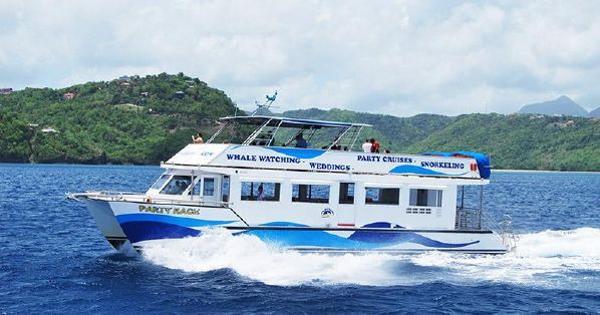 Sea Taxi Yachts Twin Deck