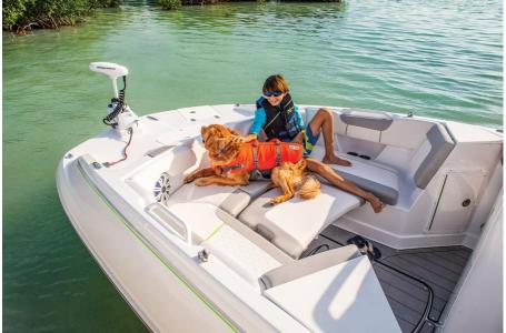2020 Tahoe boat for sale, model of the boat is 2150 CC & Image # 11 of 50