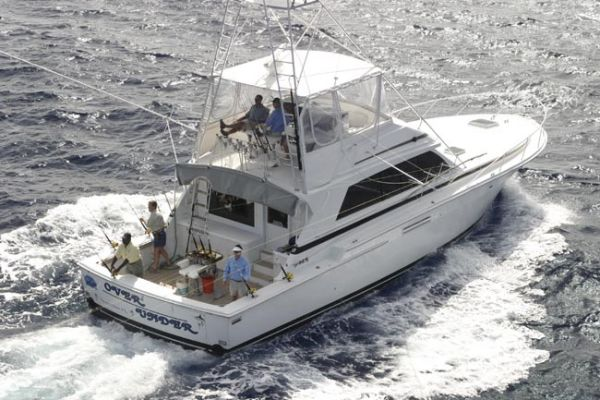 54' Bertram Sportfish Convertible