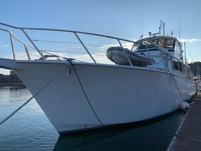 Custom Aluminum Sportfish