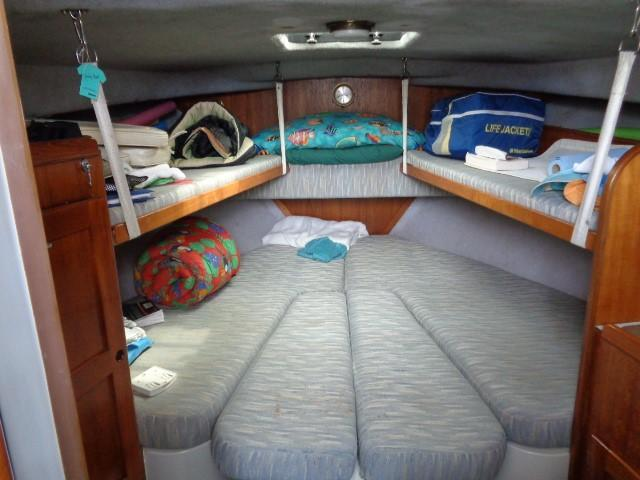 Rampage Sportfish - bow berth, with extra bunks