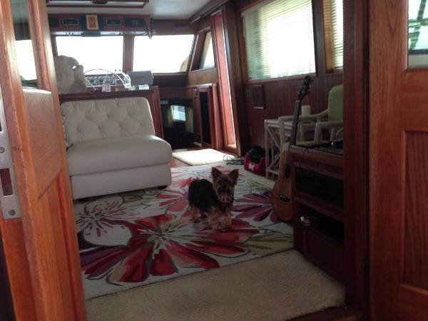Hatteras 53 Motor Yacht For Sale Buy