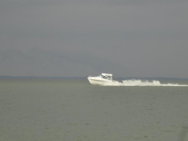 Albemarle290 Express Fisherman