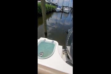 Sailfish 242 CC video