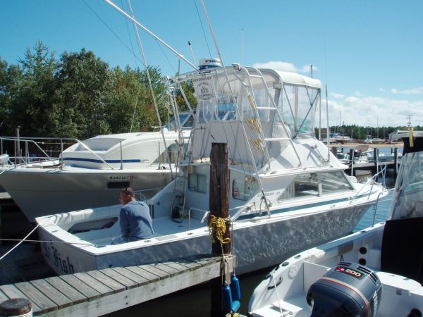 Bertram - 28 Flybridge Cruiser Sports Fishing Boats