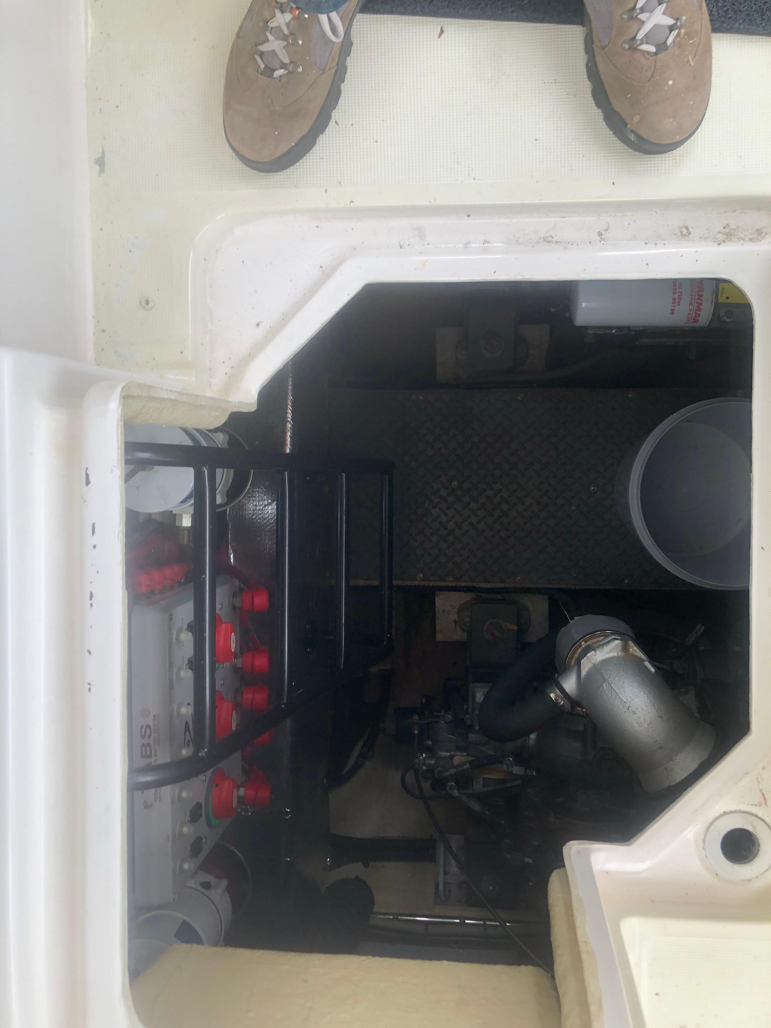 Regal Commodore - Photo: #23