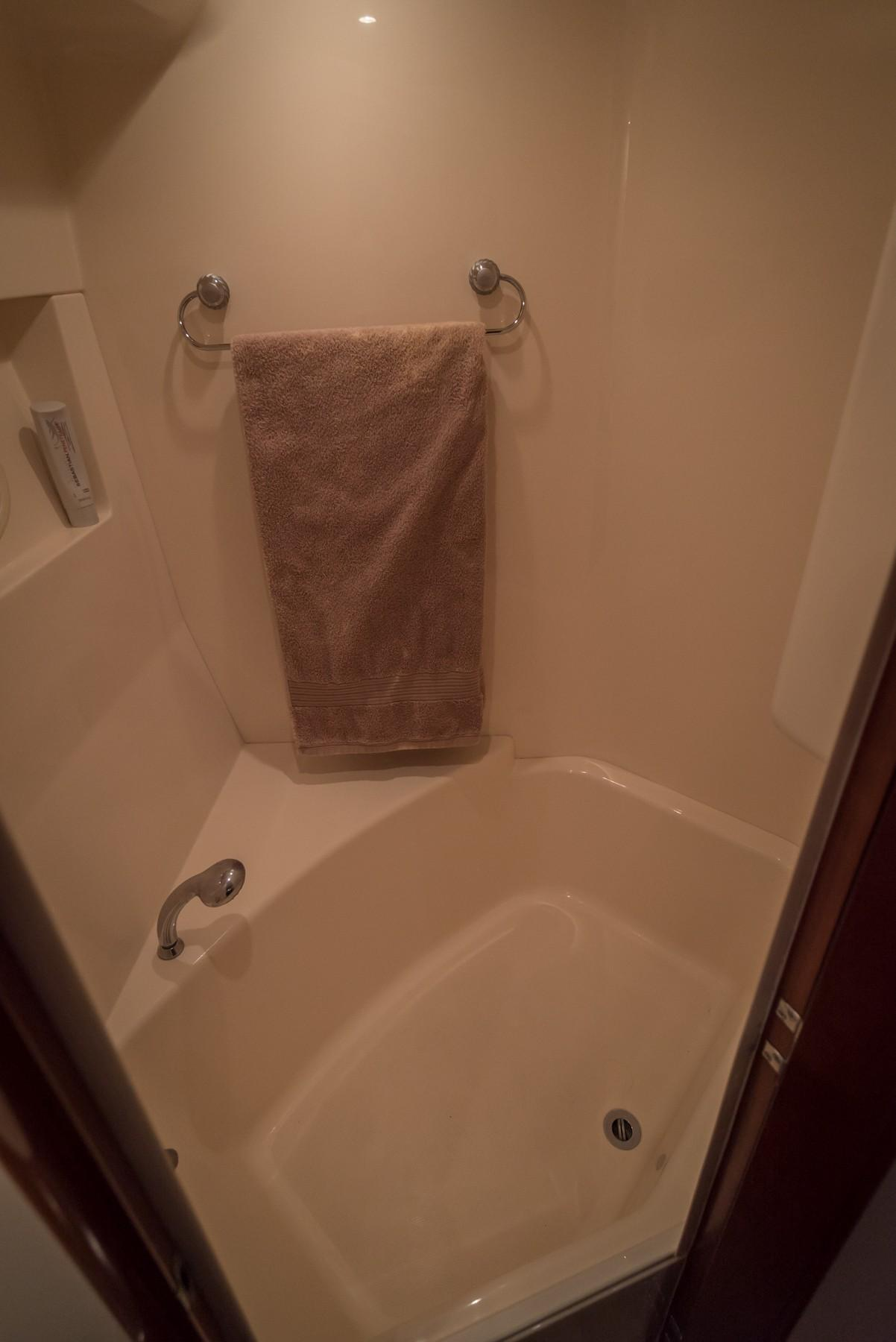 Master Ensuite Separate Shower& Tub