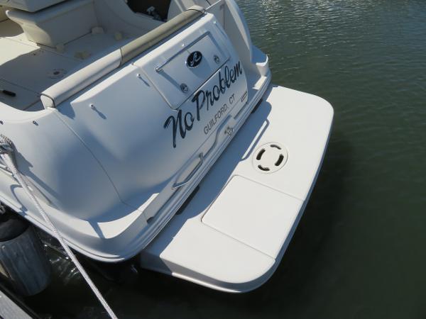 Sea Ray 250 Amberjack Broker Buy