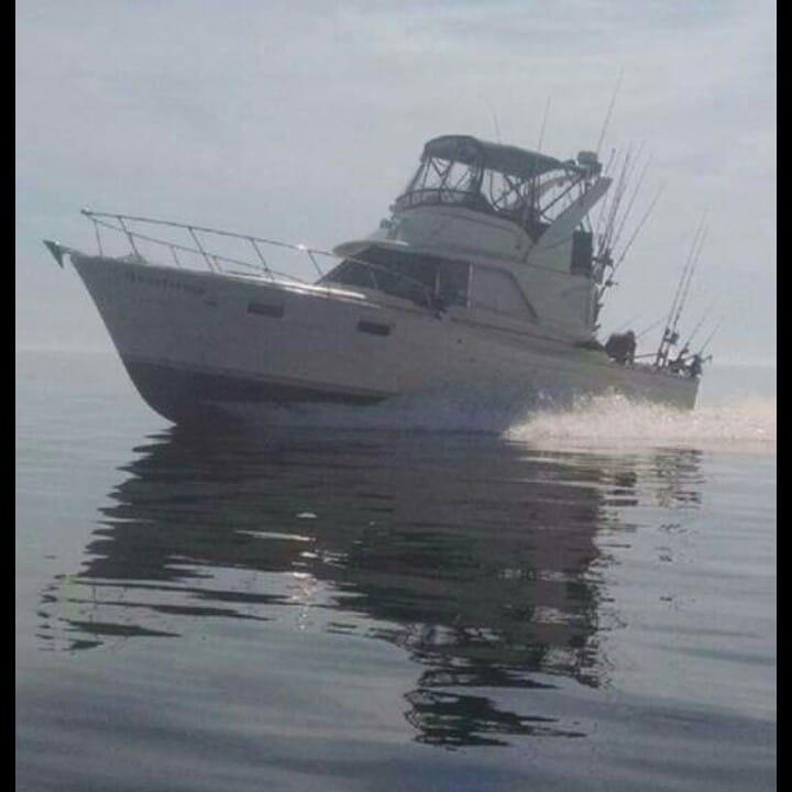 Used Chris-Craft Boats for Sale in United States