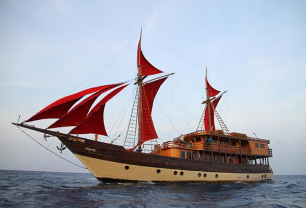 Phinisi Diving Schooner