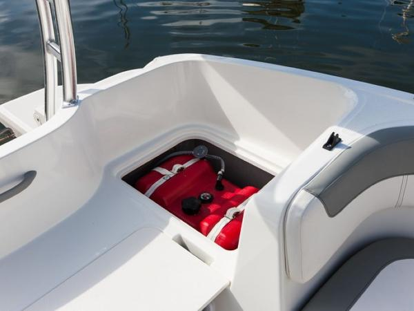 2020 Bayliner boat for sale, model of the boat is ELEMENT E5 & Image # 37 of 41