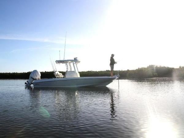 2020 Boston Whaler boat for sale, model of the boat is 240 Dauntless Pro & Image # 21 of 62