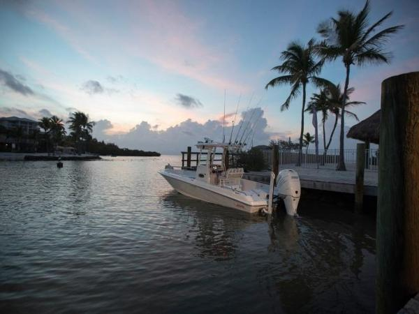 2020 Boston Whaler boat for sale, model of the boat is 240 Dauntless Pro & Image # 22 of 62