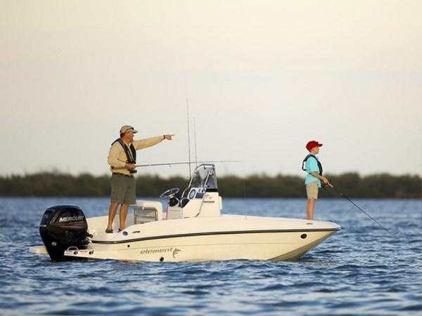 2020 Bayliner boat for sale, model of the boat is Element F16 & Image # 12 of 28