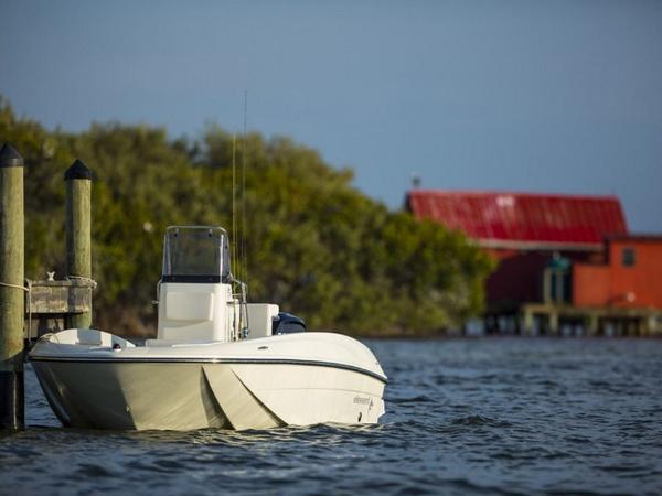 2020 Bayliner boat for sale, model of the boat is Element F16 & Image # 23 of 28