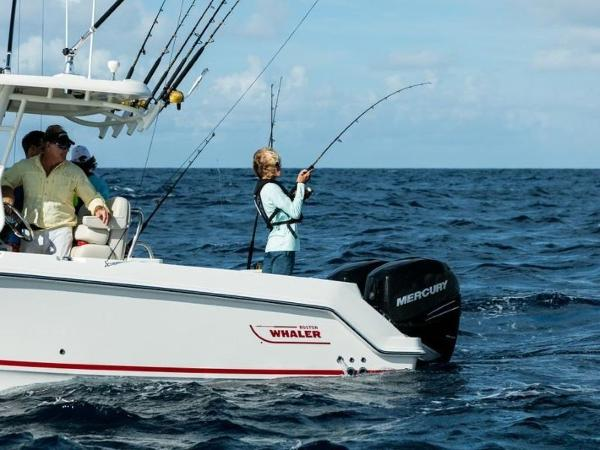 2020 Boston Whaler boat for sale, model of the boat is 250 Outrage & Image # 49 of 91