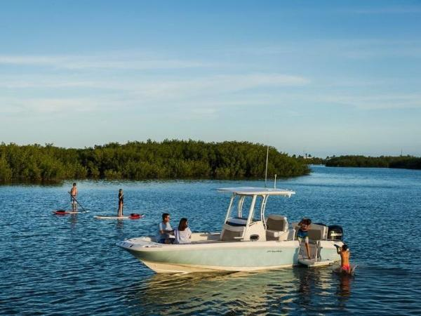 2020 Boston Whaler boat for sale, model of the boat is 270 Dauntless & Image # 8 of 40
