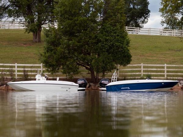 2020 Bayliner boat for sale, model of the boat is T18Bay & Image # 13 of 45