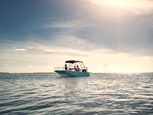 2019 Boston Whaler boat for sale, model of the boat is 170 Montauk & Image # 21 of 86