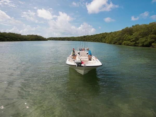 2019 Boston Whaler boat for sale, model of the boat is 170 Montauk & Image # 28 of 86