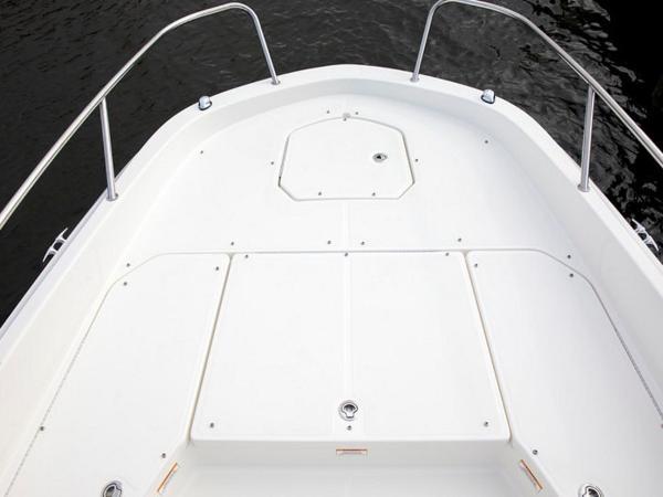 2020 Bayliner boat for sale, model of the boat is Element F21 & Image # 16 of 47