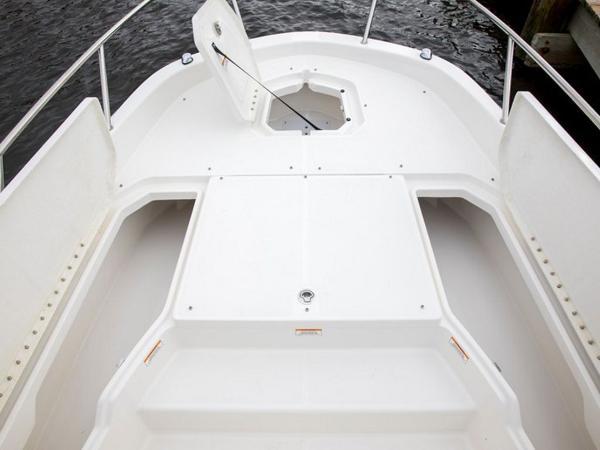 2020 Bayliner boat for sale, model of the boat is Element F21 & Image # 25 of 47