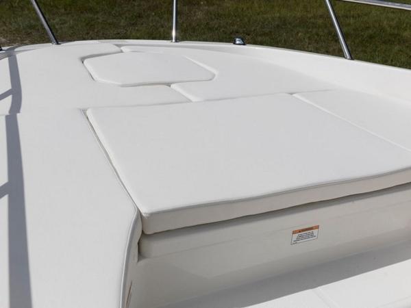 2020 Bayliner boat for sale, model of the boat is Element F21 & Image # 42 of 47