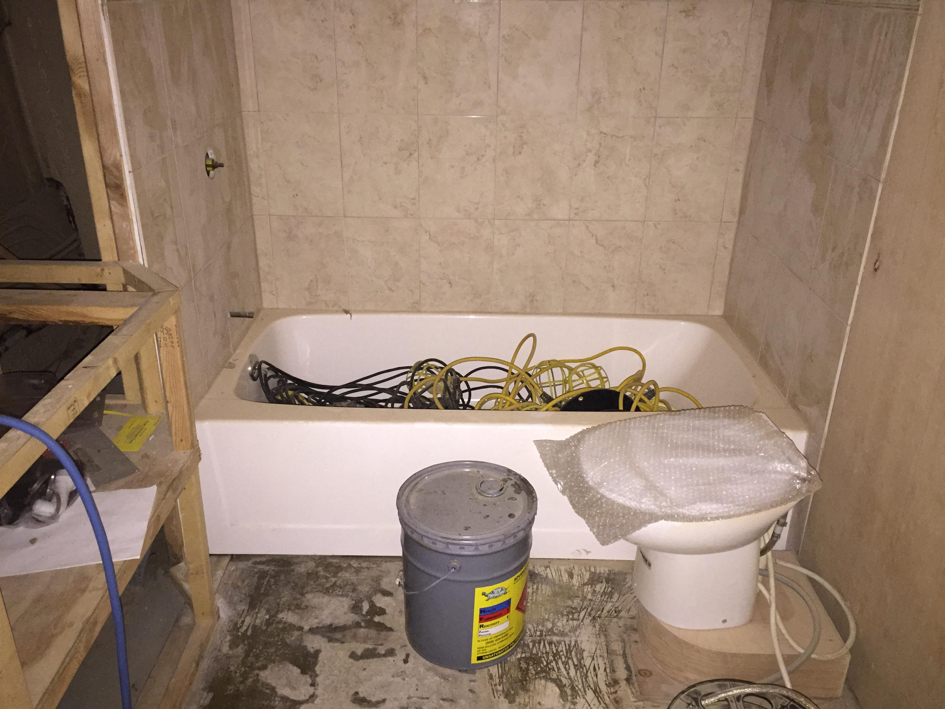Master Tub/Shower