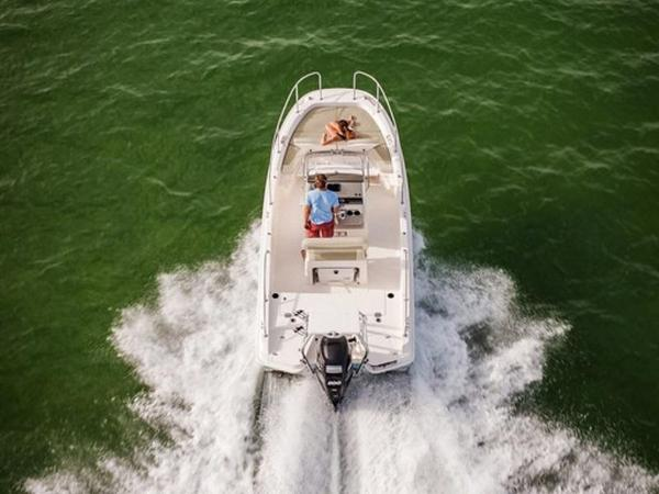 2020 Boston Whaler boat for sale, model of the boat is 210 Dauntless & Image # 4 of 35