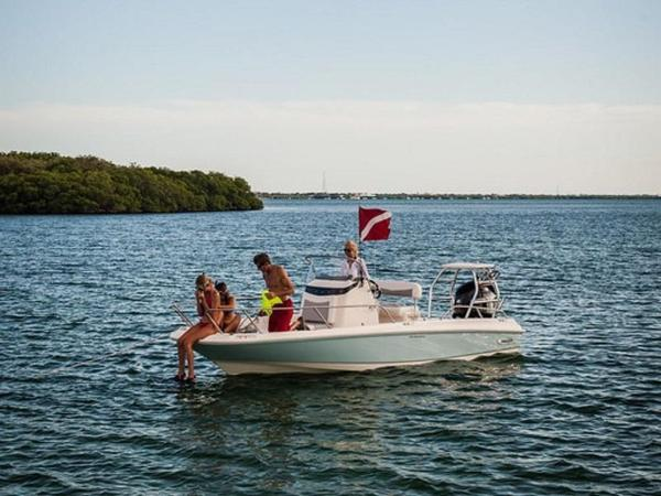 2020 Boston Whaler boat for sale, model of the boat is 210 Dauntless & Image # 17 of 35