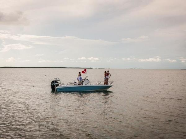 2020 Boston Whaler boat for sale, model of the boat is 210 Dauntless & Image # 18 of 35