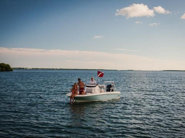 2020 Boston Whaler boat for sale, model of the boat is 210 Dauntless & Image # 20 of 35
