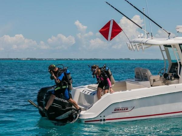 2020 Boston Whaler boat for sale, model of the boat is 280 Outrage & Image # 32 of 112
