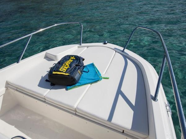 2020 Bayliner boat for sale, model of the boat is Element CC6 & Image # 6 of 19