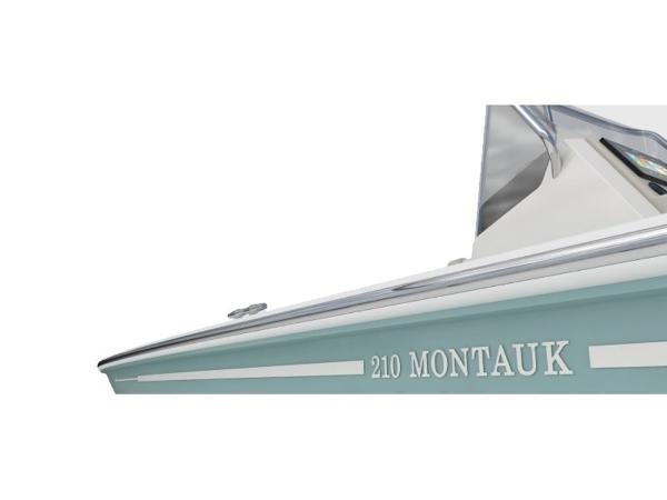 2020 Boston Whaler boat for sale, model of the boat is 210 Monauk & Image # 43 of 54