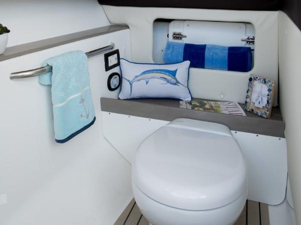 2020 Edgewater boat for sale, model of the boat is 248CX & Image # 10 of 11