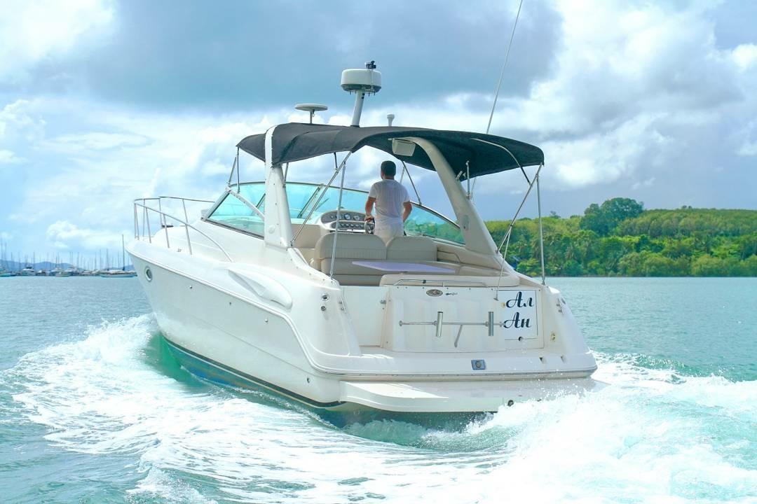 Monterey 322 Cruiser