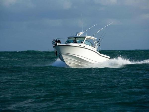 2020 Boston Whaler boat for sale, model of the boat is 315 Conquest & Image # 10 of 79