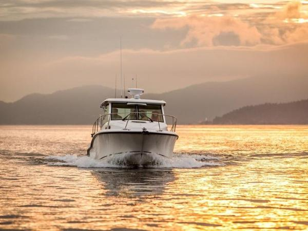 2020 Boston Whaler boat for sale, model of the boat is 315 Conquest Pilothouse & Image # 14 of 72