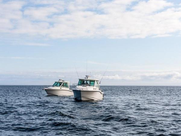 2020 Boston Whaler boat for sale, model of the boat is 315 Conquest Pilothouse & Image # 23 of 72