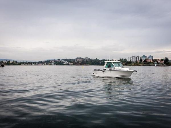 2020 Boston Whaler boat for sale, model of the boat is 315 Conquest Pilothouse & Image # 26 of 72