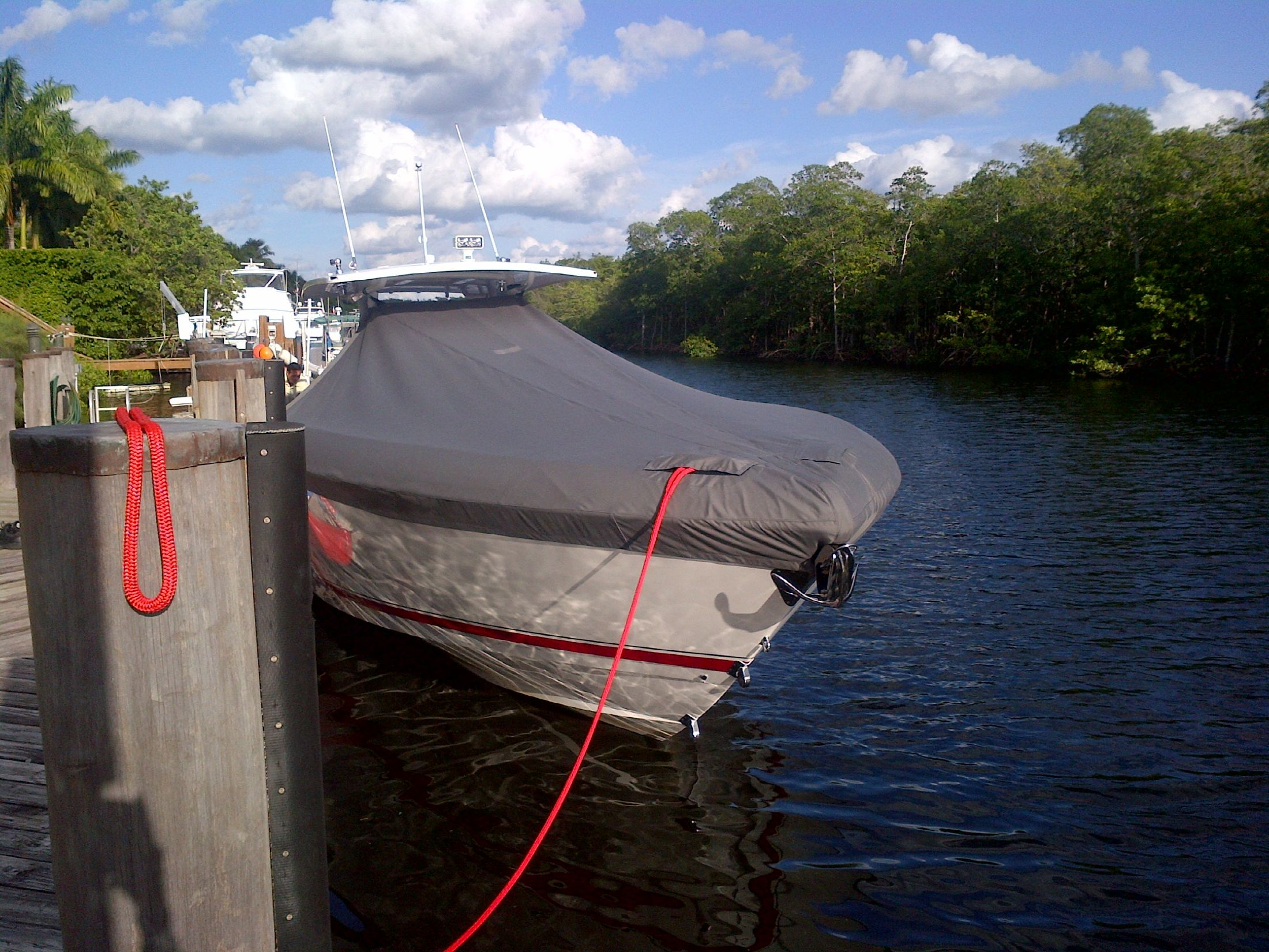 Bow Full Cover View