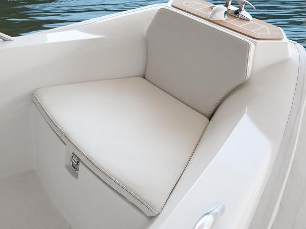Capelli 460 For Sale BoatsalesListing