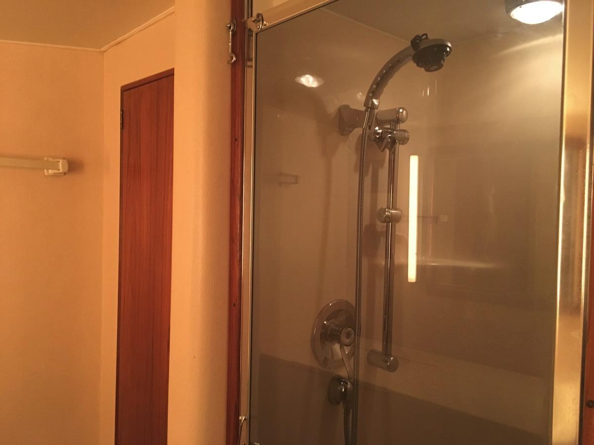 Master head shower