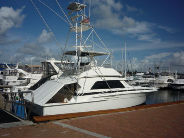 Bertram 50 Convertible Sports Fishing Boats. Listing Number: M-3545182