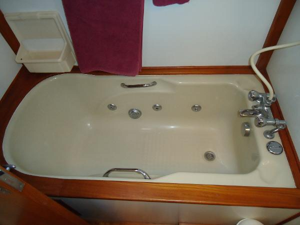 Jacuzzi-style tub with shower over