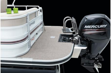 2020 Ranger Boats boat for sale, model of the boat is Reata 220C w/115ELPT 4S CT & Image # 48 of 50