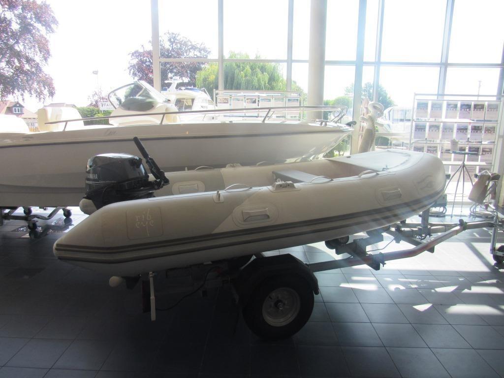Ribeye TS 310