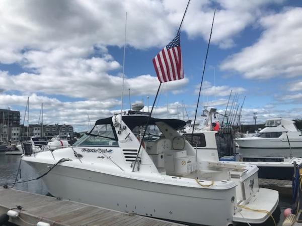 1997 Sea Ray boat for sale, model of the boat is 33' EXPRESS CRUISER & Image # 1 of 31