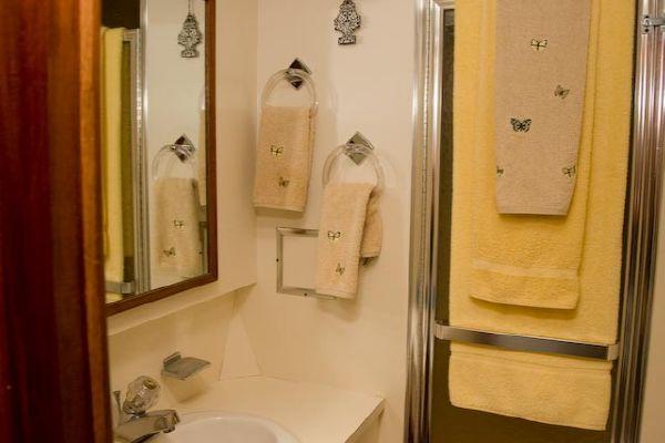 Guest Head/Stall Shower